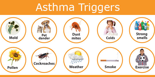 asthma triggers - how to manage your asthma