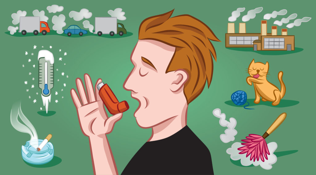 asthma triggers infographic - how to care for a loved one with asthma