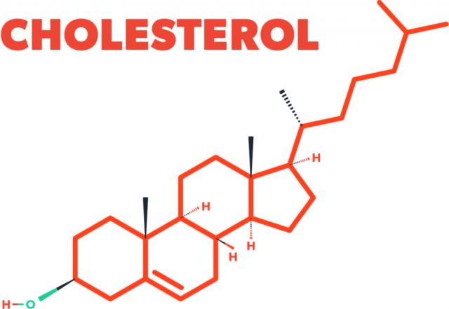 cholesterol chemical symbols